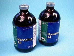 Нородин 24 раствор (Norodine 24 Solution)