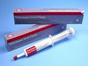 Трибриссен оральная паста (Tribrissen Oral Paste)